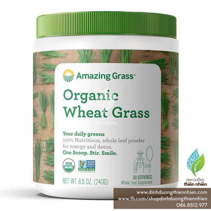 AmazingGrass_OrganicWheatGrassPowder_New_01