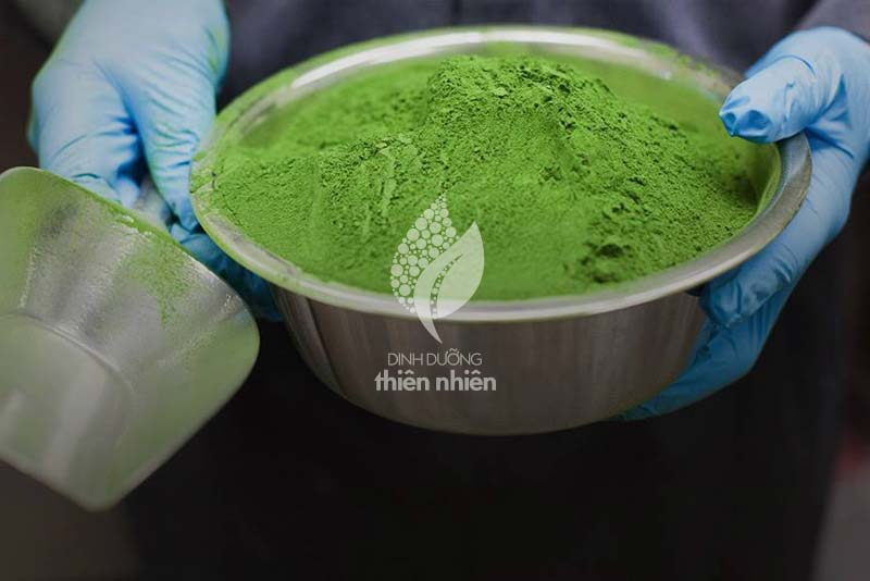 AmazingGrass_WheatGrass_Process_04