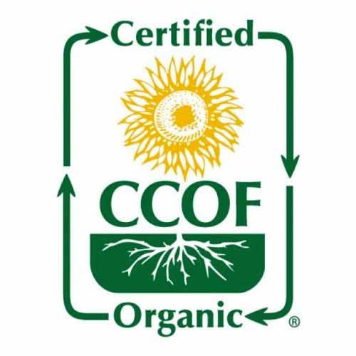 certicate_CCOF