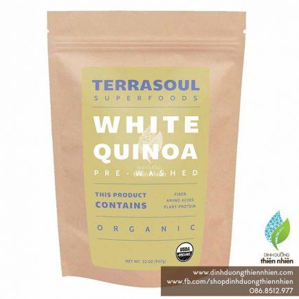 Terrasoul_WhiteQuinoa_01