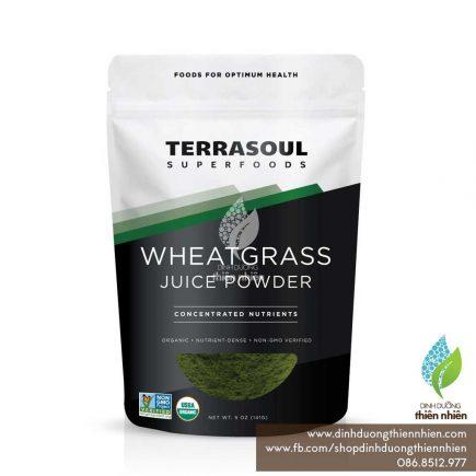 TerrasoulSuperfoods_WheatGrassJuicePowder_141g_01