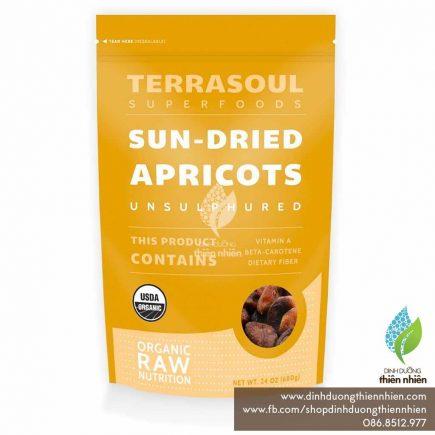 terrasoul_driedapricots_01